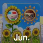 Animal Crossing Pocket Camp June